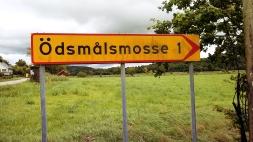 Nazwa miejscowości, w której mieszka ciocia i Pan Czesiu :)