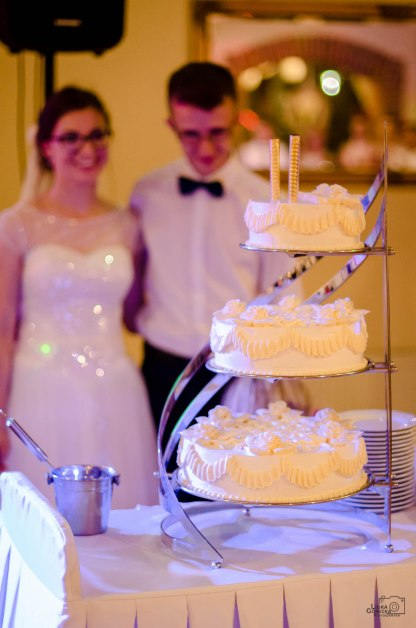 Ślub Sylwia i Sebastian 521